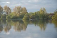 Carp_fishing_scenic